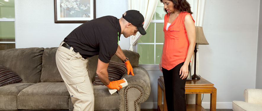 Trumbull, CT carpet upholstery cleaning